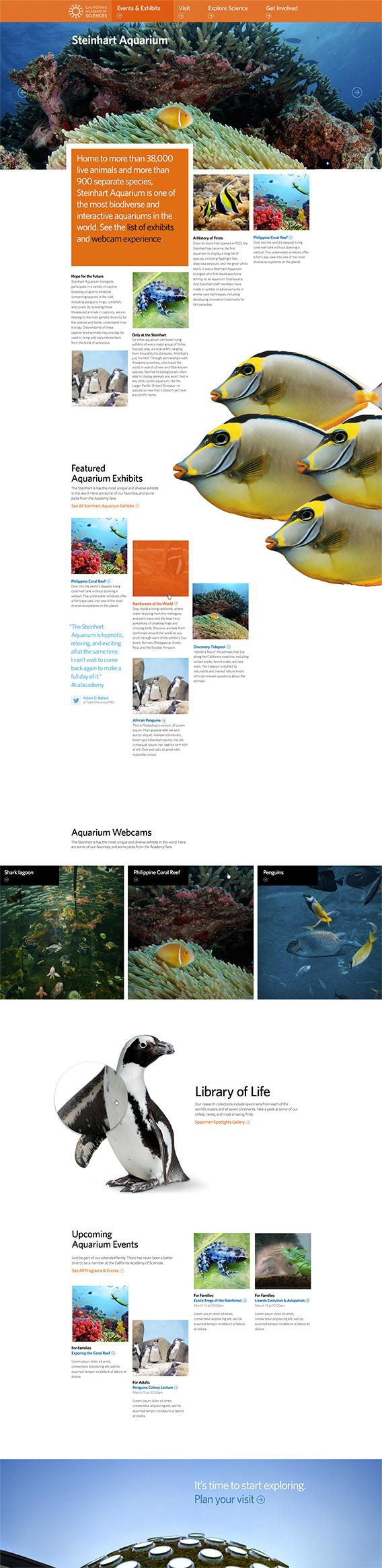 project-cas-website-left1